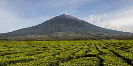 {Hiking Series} Indonesia - Kerinci (3,805m): Highest Volcano in Indonesia tickets