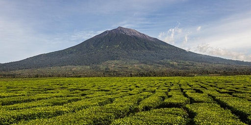 {Hiking Series} Indonesia - Kerinci (3,805m): Highest Volcano in Indonesia