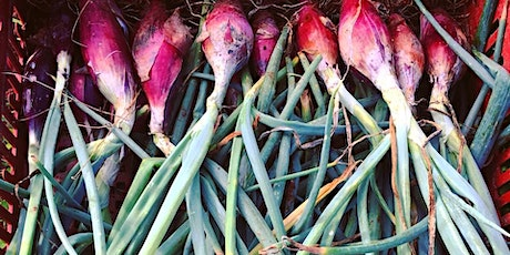 Community Farmer Day - 9 May - planting the onions! tickets