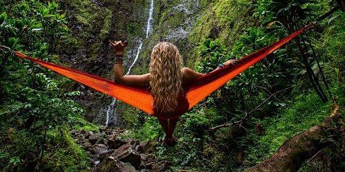 Dobre prakse uporabe ayahuasce