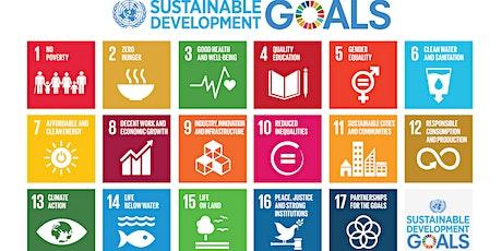S'inspirer des SDG's pour aller vers un monde plus durable au quotidien billets