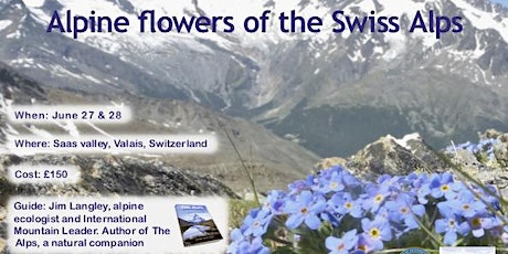 Alpine flowers of the Swiss Alps biglietti