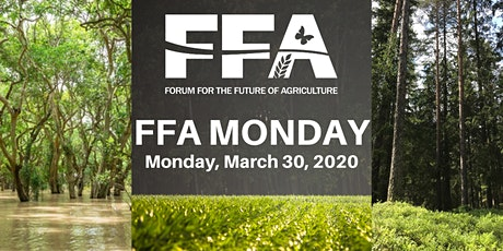 FFA Monday 2020 tickets