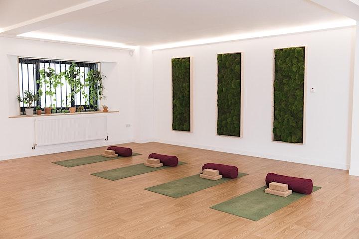 Yoga Workshop - Inversion and Arm Balances image