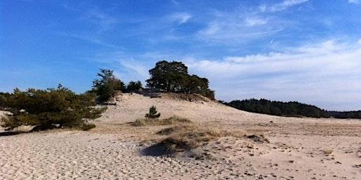 Wandeling Single Evenementen Hulshorst 40+ 40-