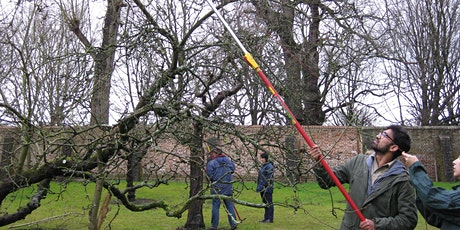Orchard maintenance with KUBAG and The Orchard Project 2020 tickets