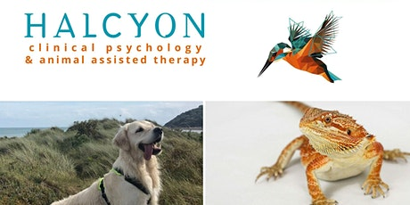 Introduction to Animal Assisted Therapy tickets