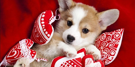 My Furry Valentine: Free mini grooming for dogs and makeovers for people tickets