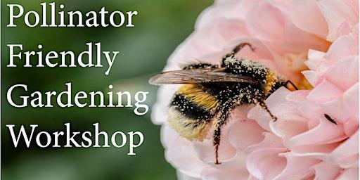 Pollinator Gardening 101