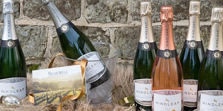 Christmas Fayre and Wine Sale Day tickets