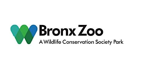 Bus Trip to the Bronx Zoo