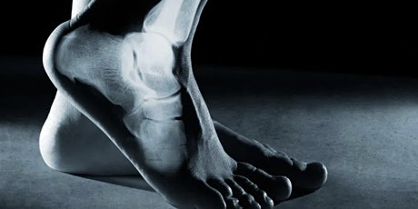 Solid Biomechanics: Lecture Series IV tickets