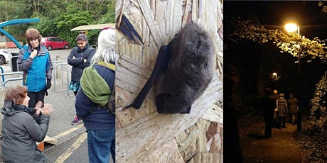 Bat Walk for Urban Trees Week at Roehampton Vale tickets