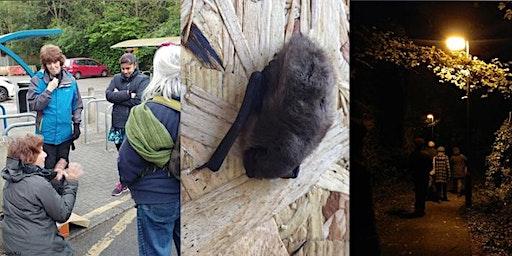 Bat Walk for Urban Trees Week at Roehampton Vale