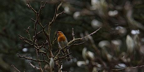 RSPB Big Garden Bird Watch at Kingston Uni - Dorich House tickets