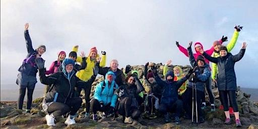 Improver's Trail Run - The Dublin Mountains