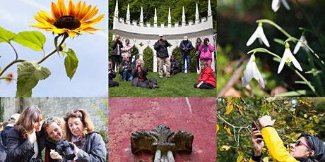 Photography for Wellbeing Workshop. See Rococo Gardens with Fresh Eyes tickets