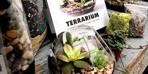 Zen Garden Terrarium Workshop
