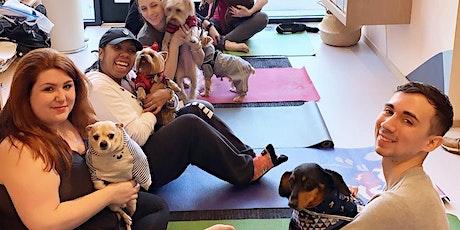 Doga (Dog Yoga) with Lululemon tickets