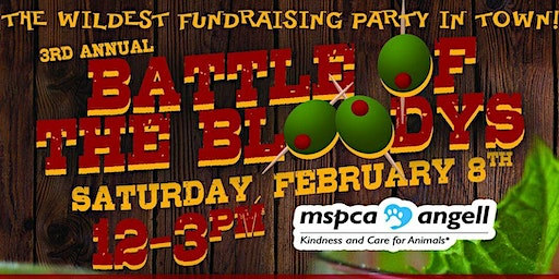 3rd Annual Battle of the Bloodys!