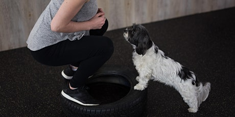 Workout with your Dog (6-weeks) tickets