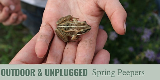 Outdoor & Unplugged: Spring Peepers