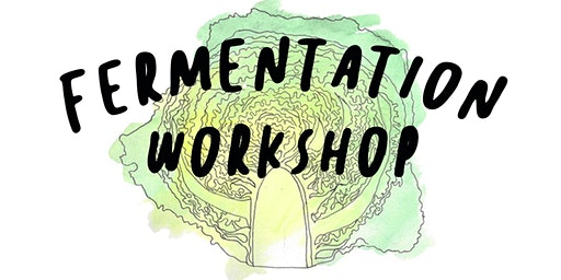 Fermentation Workshop with Odd Colony Brewing Company