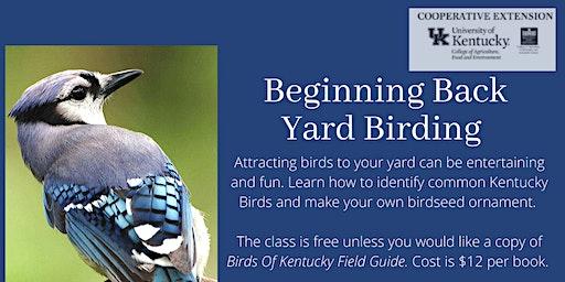 Beginning Back Yard Birding