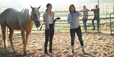 Onsite Equine Therapy  3-Hour Workshop tickets