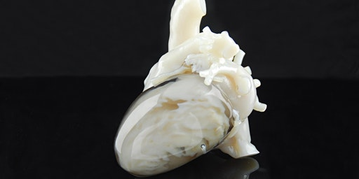 Gallery Talk: Cardiology