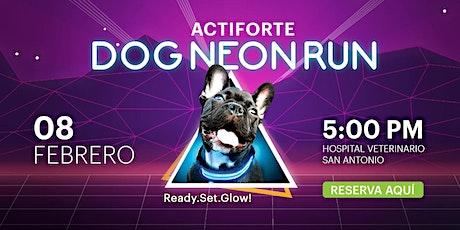 DOG NEON RUN 2020 entradas
