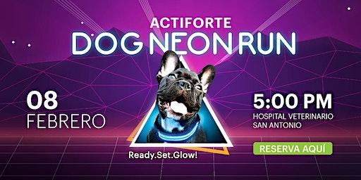 DOG NEON RUN 2020