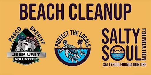 Apr 2020 Beach Cleanup Anclote Beach
