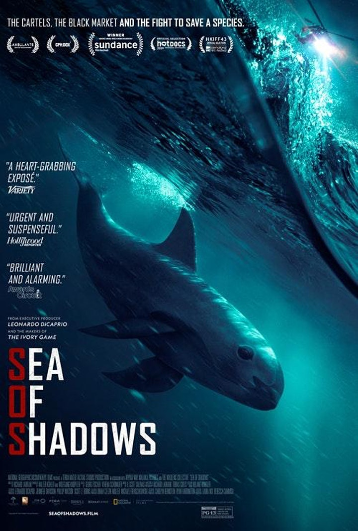 Sea of Shadows: Film screening and panel discussion image