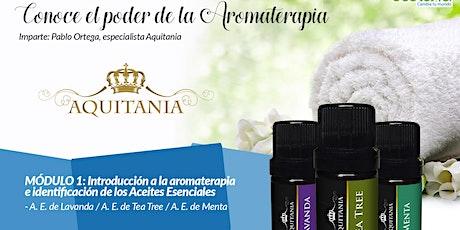 """Diplomado """"Conoce el poder de la aromaterapia"""" tickets"""