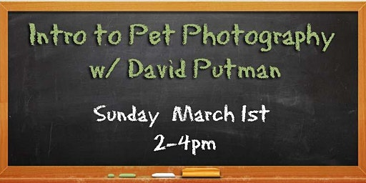Intro to Pet Photography w/ David