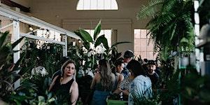 Canberra - Huge Indoor Plant Warehouse Sale - Rumble...