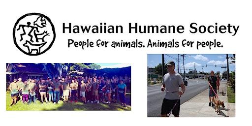 SM&SP Hawaiian Humane Society Volunteer Opportunity