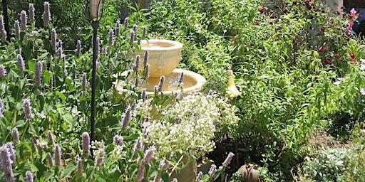 Plan Your Herbal Wellness Garden