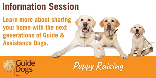 Guide Dog Puppy Raising - Information Session