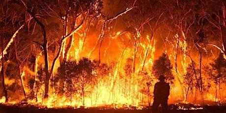 Australian Bushfire Benefit Concert tickets