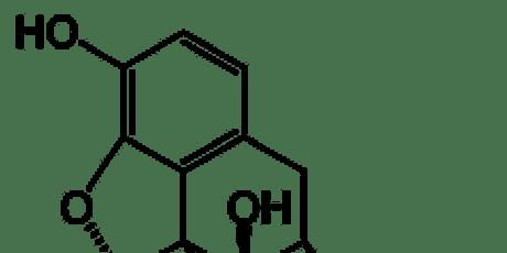 Naloxone (Narcan) Training tickets