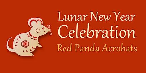 Lunar New Year Celebration: Red Panda Acrobats