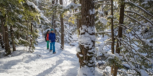 EXPLORE: Snowshoe Exploration