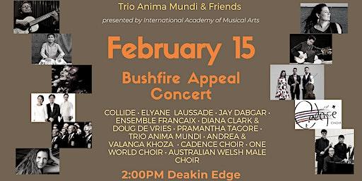 Trio Anima Mundi and Friends - Bushfire Appeal Concert