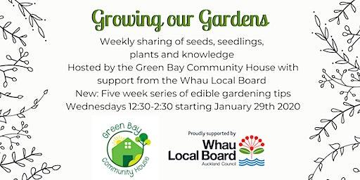 Wednesday Edible Gardening in Green Bay