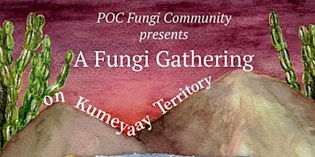Fungi Gathering On Kumeyaay territory tickets