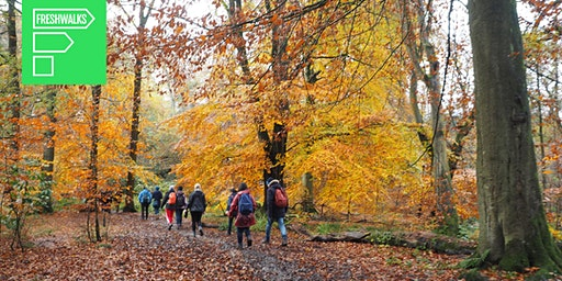 Styal Country Park: Freshwalks Netwalking Event