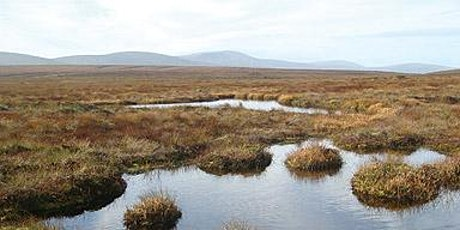 The Wild Bogs of Ireland  tickets