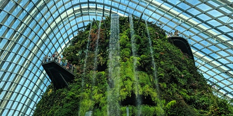 Gardens by the Bay Walking Tour tickets